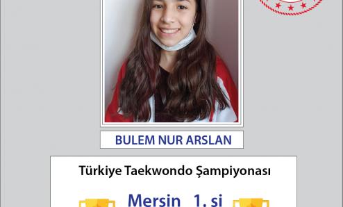 Türkiye Taekwondo Şampiyonası'nda Büyük Başarı